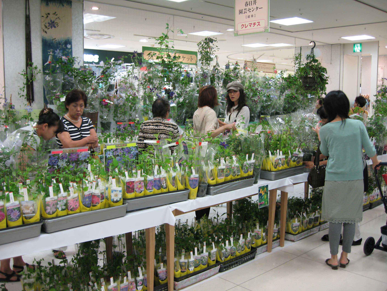 愛知・春日井の園芸センター「ガーデンセンター不 …