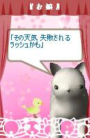 060317haiku3.jpg