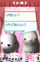 060317usabiojou4.jpg