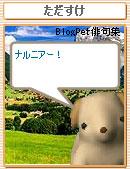 060818tadasuke4.jpg