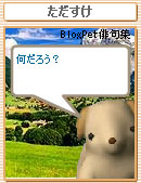 060818tadasuke5.jpg