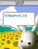 060823content11.jpg
