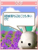 060823shounen5.jpg