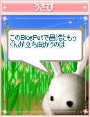060823shounen8.jpg
