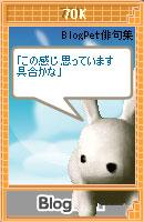 060830haiku12.jpg