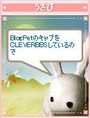 060909haikei3.jpg