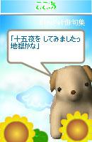 060914suikou3.jpg