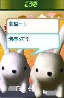 060925kousachan2.jpg