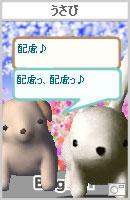 061017tadasukechan11.jpg