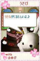 061017usabiyokoku2.jpg