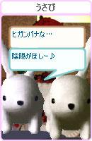 061017usana17.jpg