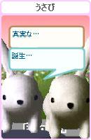 061022usamechan12.jpg