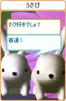 061022usamechan17.jpg