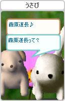 061028kanomuchan10.jpg