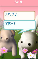 061028kanomuchan11.jpg