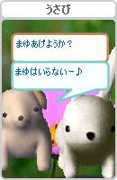 061028kanomuchan15.jpg