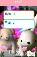 061028kanomuchan6.jpg