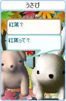 061028kanomuchan7.jpg