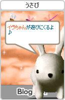 061028usabiyokoku2.jpg