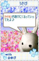 061028usabiyokoku3.jpg