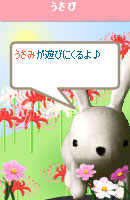 061030usabiyokoku1.jpg