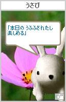 061031haiku6.jpg