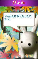 061108pyonchan14.jpg