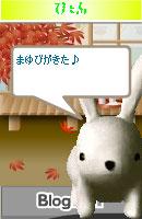 061108pyonchan3.jpg