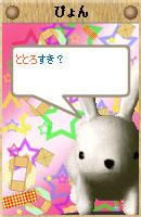 061108pyonchan6.jpg