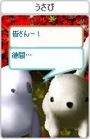 061111tenkachan2.jpg
