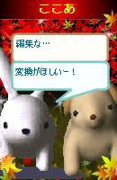 061114cocoausabi1.jpg