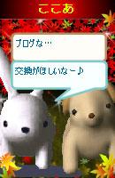 061114cocoausabi4.jpg