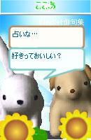 061114newkaiwa3.jpg