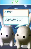 061114newkaiwa4.jpg