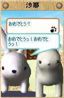 061128sayachan2.jpg