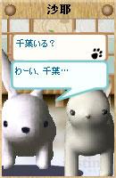 061128sayachan3.jpg