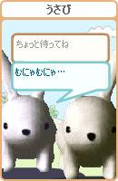 061202usamochan3.jpg
