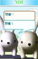 061202usamochan4.jpg