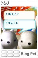 061202usanachan3.jpg