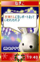 061210nagikochan1.jpg