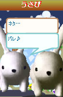 070109kurumochan10.jpg