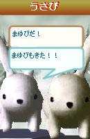 070109kurumochan3.jpg