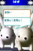 070109kurumochan5.jpg