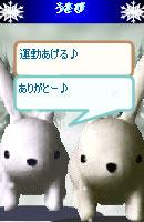 070109kurumochan7.jpg