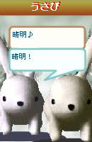 070109kurumochan8.jpg