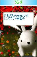 070114doumei1.jpg