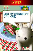 070114doumei5.jpg