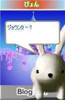 070121pyonchan1.jpg