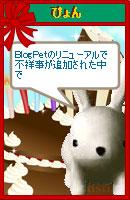 070121pyonchan9.jpg