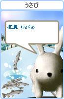 070128chacha2.jpg
